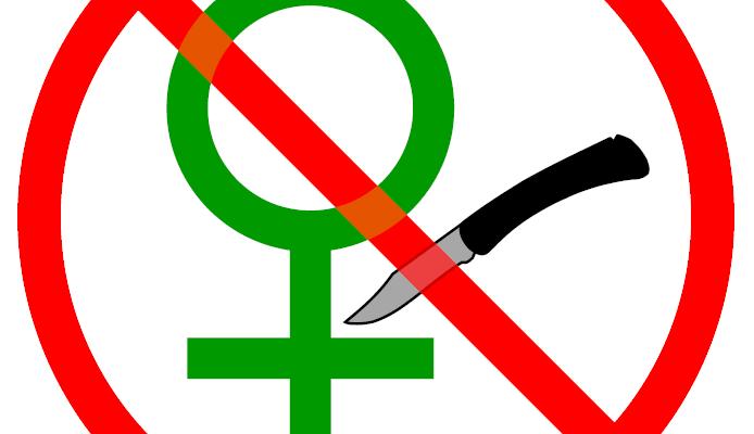 http://ilga.org/ilga/static/uploads/images/2012/12/21/No-FGM.png